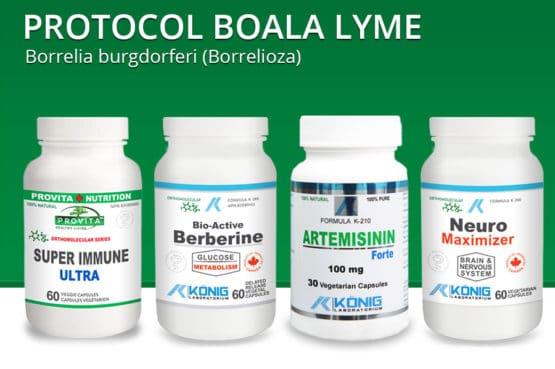 Protocol boala Lyme