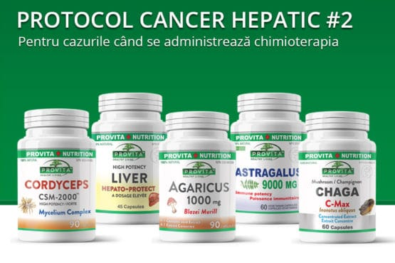 Protocol cancer hepatic 2